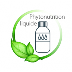 phytonutrition liquide
