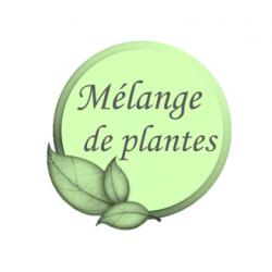 mélange de plantes chevaux