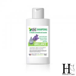 shampoing  brillance chevaux horsecarephyto