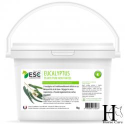 eucalyptus respiration toux cheval horsecarephyto