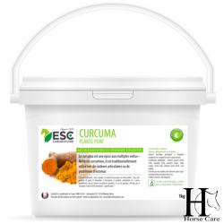curcuma estomac articulations cheval horsecarephyto
